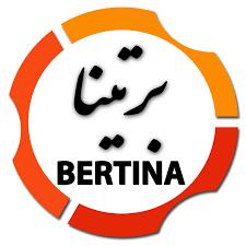 شرکت هاستینگ برتینا
